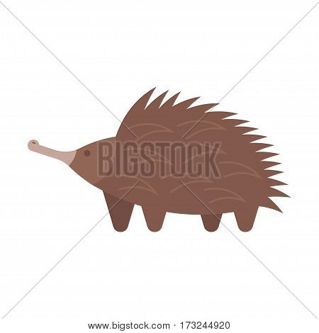 Vector flat style illustration of echidna. Icon for web. Isolated on white background.