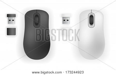 Wireless mouse and USB thumb size transceiver devices. Vector illustration top view