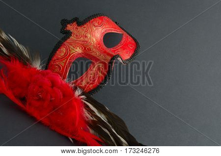 Carnival mask theatrical scenery most famous accessory
