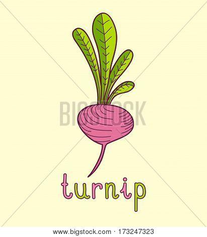 Cartoon vector Illustration of turnip on yellow background