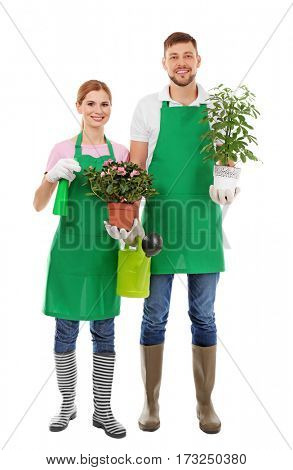 Two florists holding house plants and gardening tools on white background
