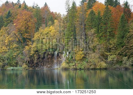 Forest and river of Plitvice national park, Croatia, purposely blurred, selective focus on foreground
