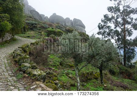 The of mountain Monsanto in the fog Portugal