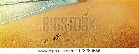 Footprints in La Jolla beach in California
