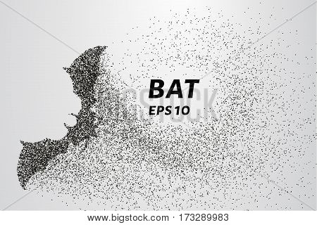 Bat Out Of Particles. Bat Consists Of Circles And Points. Vector Illustration