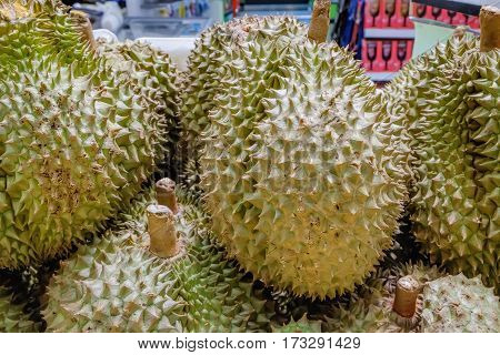 Group of durians close up on night Thai Fruit Market. Yellow Durian Mon Thong is king of fruits in southeast Asia