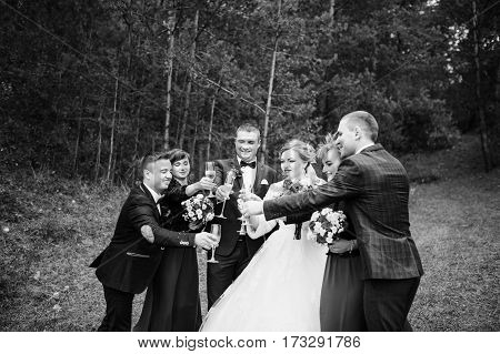 Wedding Couple With Friends Bridesmaids And Groomsman Drinking Champagne At Wood. Black And White Ph