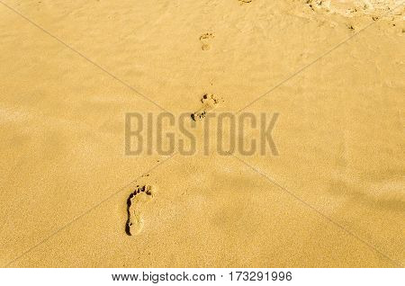 details of a serie of footsteps left on the sand