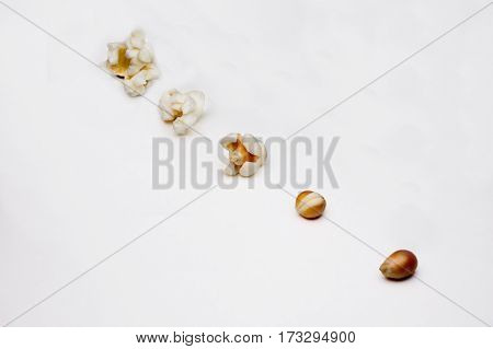 Stages Of Preparation Of Popcorn On A White Background