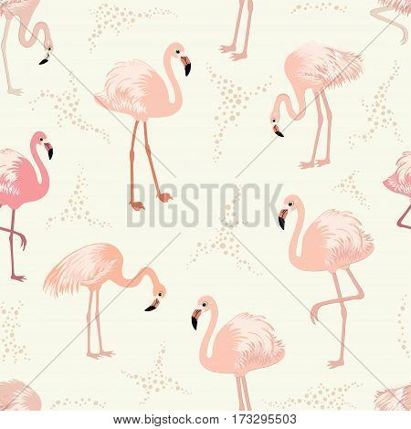 Seamless pattern with pink flamingos in vector
