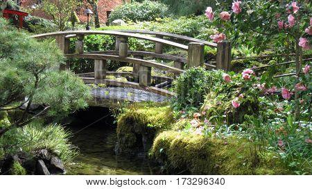 Japanese Style Bridge in Spring Garden Setting