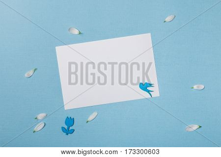 Spring top view composition: blank stationary template / invitation mockup scattered petals around blue flying bird and flower. Sky blue background with copy space for text. Flat lay.