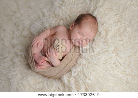 Two week old newborn baby boy swaddled in a beige wrap. He is sleeping on a white flokati rug and holding a plush bear toy.