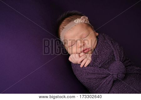 Sleeping nine day old newborn baby girl swaddled in a purple wrap. Shot in the studio on purple material.