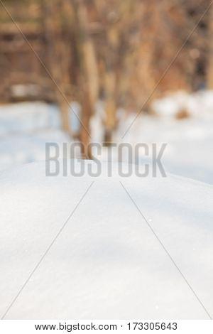 Snow winter background - white winter texture