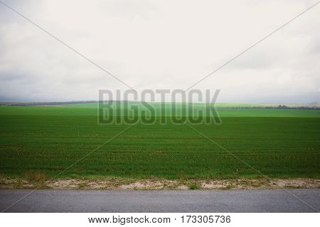 Field Of Green Grass And The Sky With Clouds