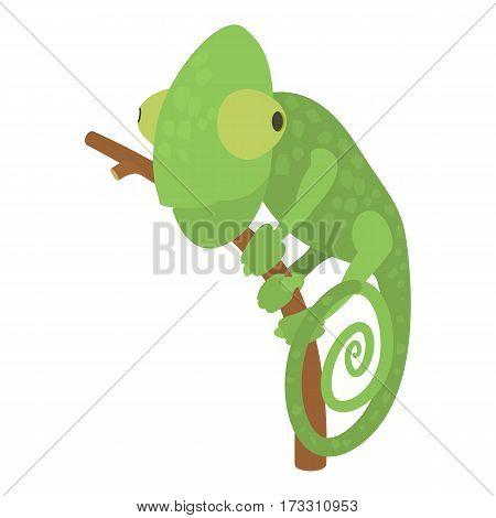 Chameleon icon. Cartoon illustration of chameleon vector icon for web
