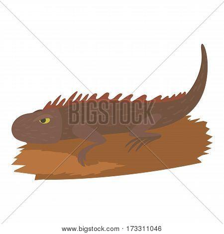 Iguana icon. Cartoon illustration of iguana vector icon for web