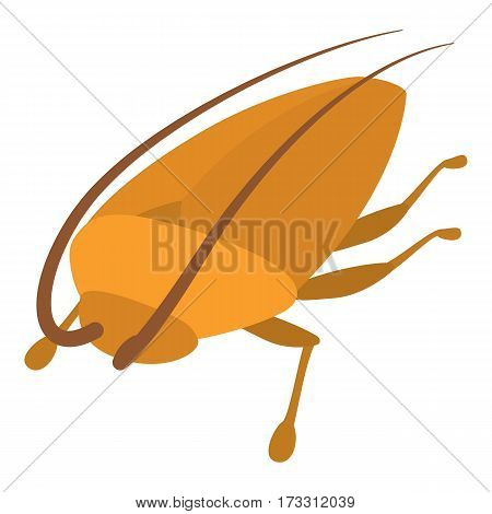 Cockroach icon. Cartoon illustration of cockroach vector icon for web