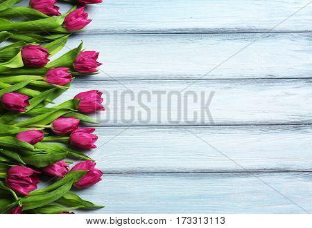 Purple beautiful tulips on wooden background
