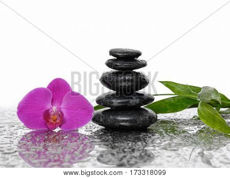 Still life with wet stacked stones with orchid and bamboo