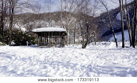 Snow And Wooden Pavilion Landscape In The Forest