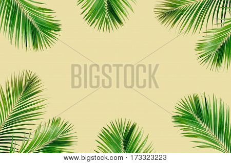 Tropical exotic palm branches frame isolated on yelow background. Flat lay top view mockup.