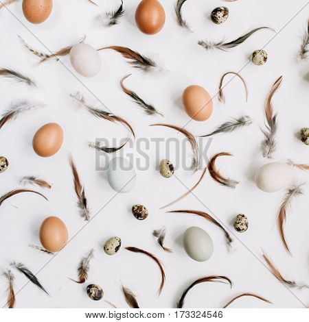 White and brown Easter eggs quail eggs and feathers on white background. Flat lay top view. Traditional spring concept.