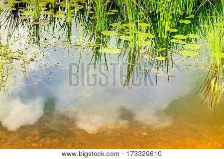Water reflection of sky rural Bengal at Howrah West Bengal India