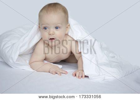 Handsome 8 month boy under white blanket on white background.