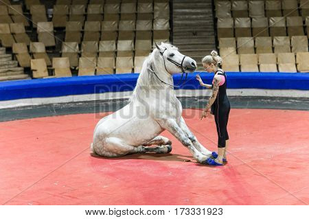 Female trainer to train a horse in the arena at the circus.