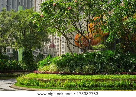 Beautiful green landscape with grass, bushes and frangipani flower in the middle of landscape at Central Park Mall photo taken in Jakarta Indonesia java