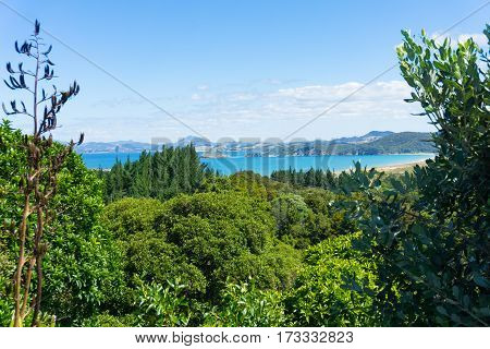 Scenic turquiose water of Ngunguru estuary under blue summer sky beyond the wonderful greens of NZ native bush clad surrounding hills.