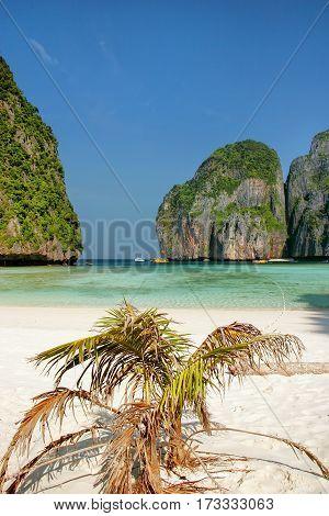 Maya Bay On Phi Phi Leh Island, Krabi Province, Thailand