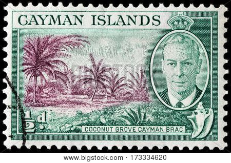 LUGA RUSSIA - FEBRUARY 7 2017: A stamp printed by CAYMAN ISLANDS shows image portrait of King George VI against view of Coconut Grove on Cayman Brac island circa 1950