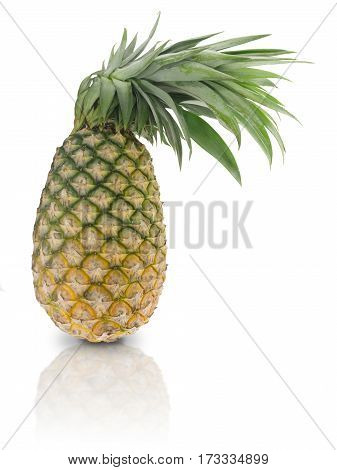 Pineapple or nanas isolated on white background