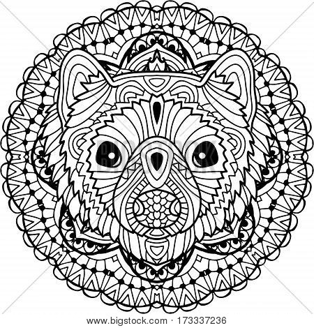 Coloring page for adults. Australian animal. The head of a marten with patterns. Monochrome ink patterns. Line art. For tattoos and other designs. Zenart
