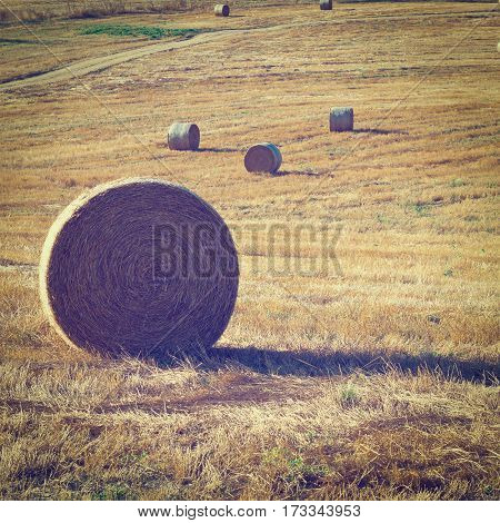 Dirt Road across the Fields with Many Hay Bales in Tuscany Italy Instagram Effect