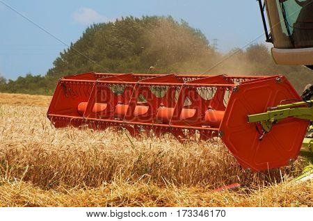 ombine harvester. Harvesting of wheat. Harvest. Combine working on a wheat field.