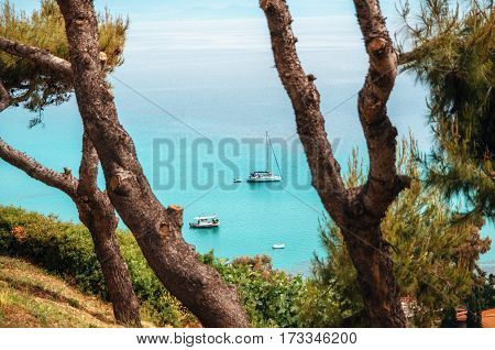 Sailing boats and yachts lie in a bay with clear transparent cerulean waters of a coast of Chalkidiki Greece. View through the pine trees from above.
