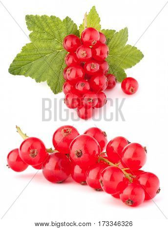 Red currants isolated on white background cutout
