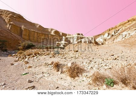 Rocky Hills of the Negev Desert in Israel Sunset