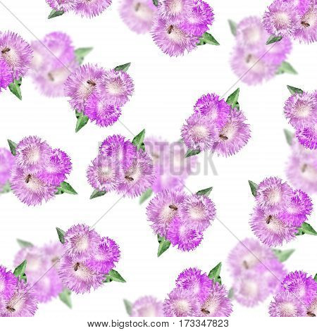Beautiful floral background with lilac thistle. Isolated