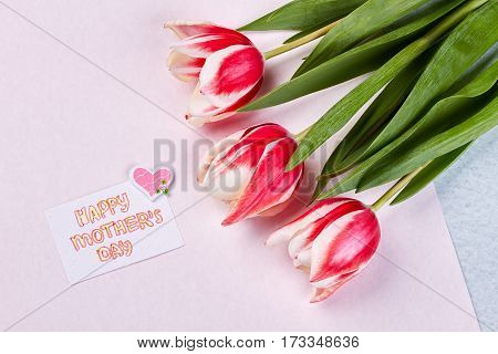 Spring flowers and card. Warmest greetings on Mother's day.