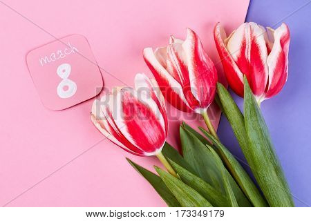 Tulips on 8 March. Send her flowers.