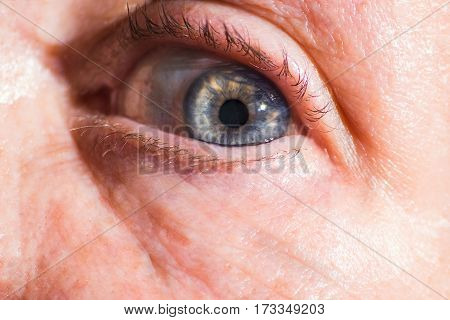 Old Macro Shot Of Old Blue Eye, Old Woman, Lady, Close Up, Grandmother.