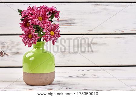 Vase with bouquet of chrysanthemums. Best gift of nature.