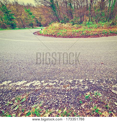Bend on the Asphalt Forest Road in Italy Instagram Effect