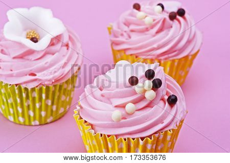 Three sweet cupcake with chocolate balls isolated on a pink background
