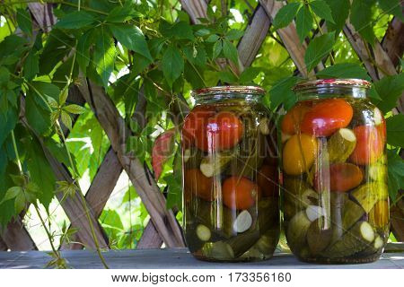 Homemade jars with pickles against green leaves